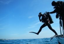 regalo subacquea