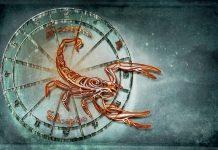 regalo scorpione
